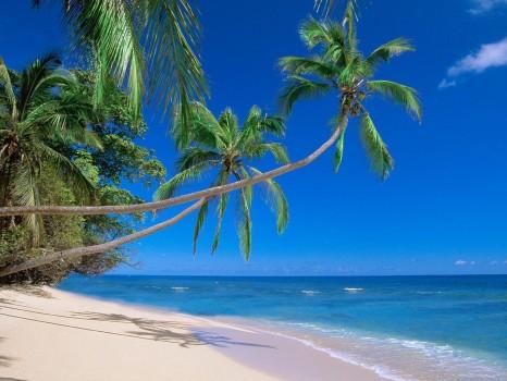 fiji_beach_image_2
