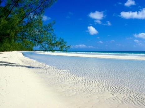 канары пляж