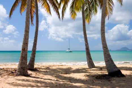 катамаран на Мартинике
