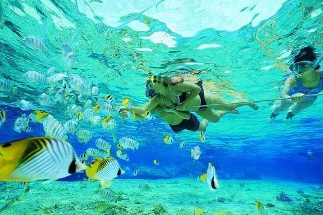 snorkling-tai%cc%86land