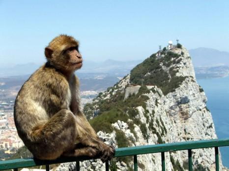 Гибралтар2