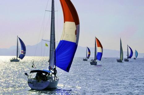 Bay regatta